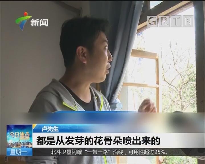 重庆:原是大树喷洒花粉