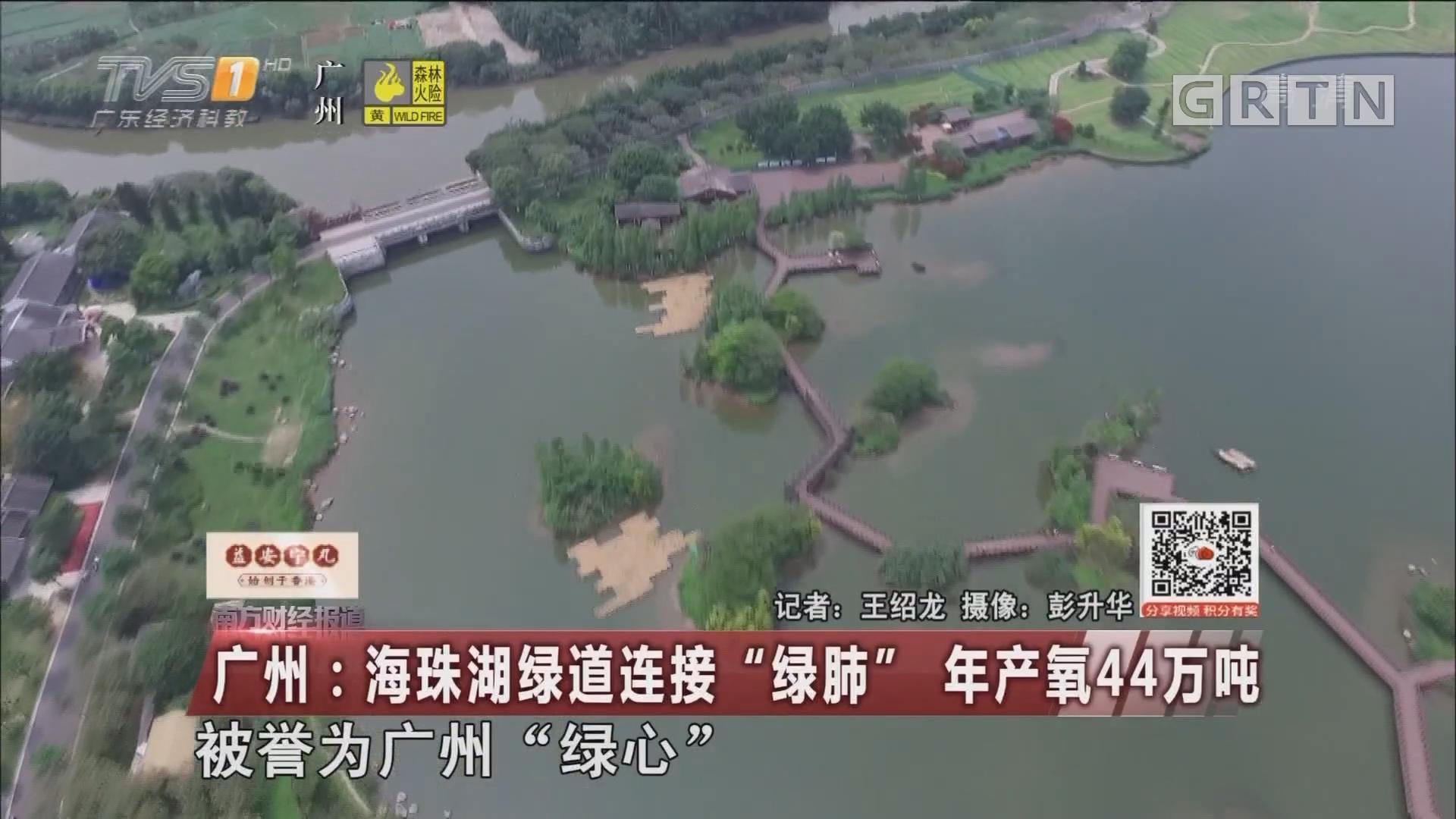 """广州:海珠湖绿道连接""""绿肺"""" 年产氧44万吨"""
