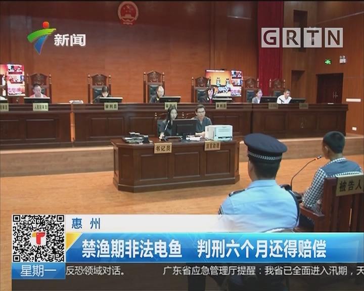 惠州:禁渔期非法电鱼 判刑六个月还得赔偿