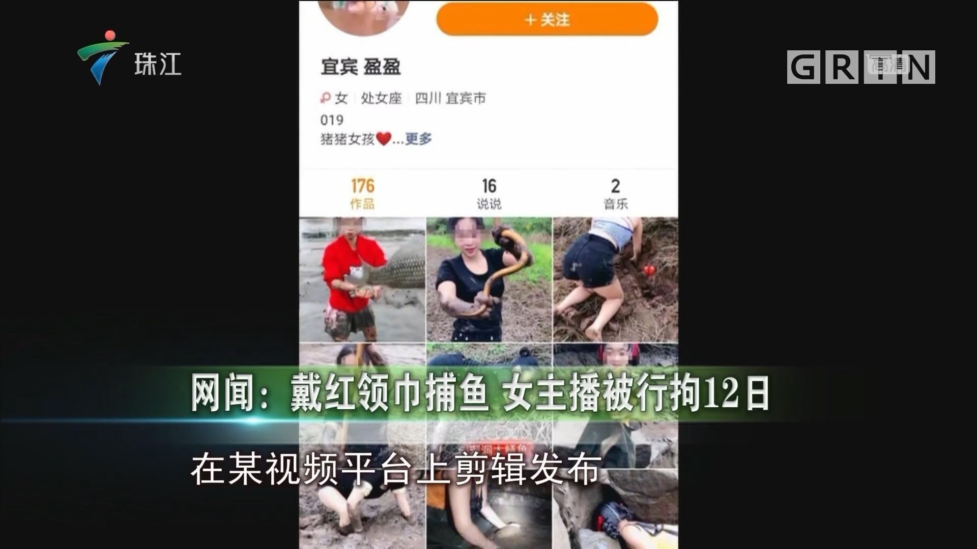 网闻:戴红领巾捕鱼 女主播被行拘12日
