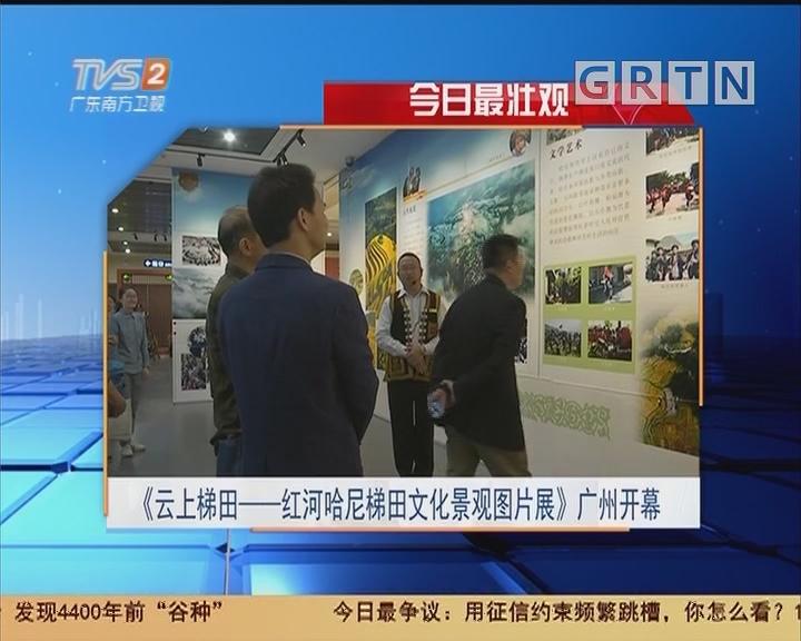 今日最壮观:《云上梯田——红河哈尼梯田文化景观图片展》广州开幕