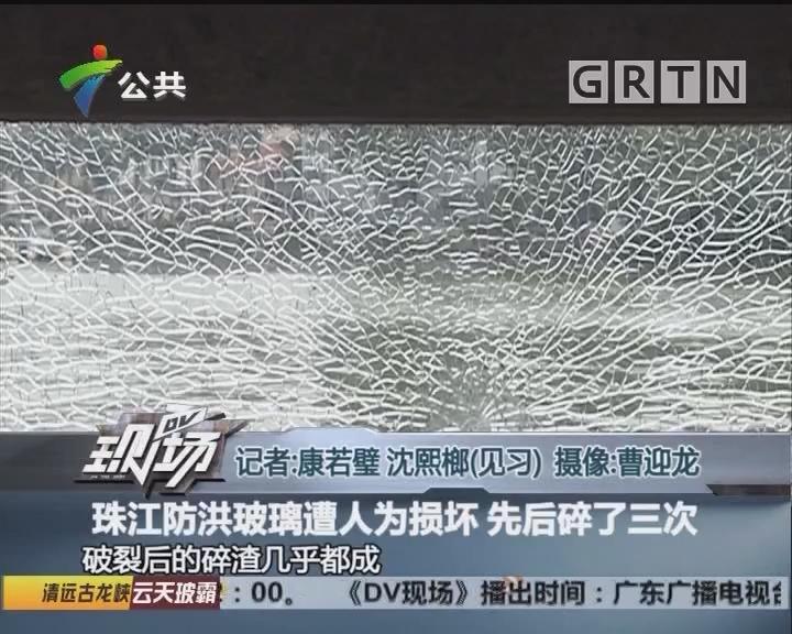 珠江防洪玻璃遭人为损坏 先后碎了三次