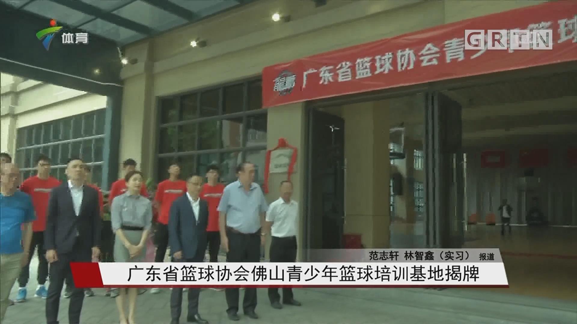 广东省篮球协会佛山青少年篮球培训基地揭牌