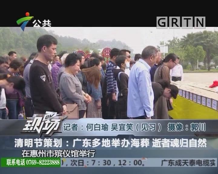 清明节策划:广东多地举办海葬 逝者魂归自然