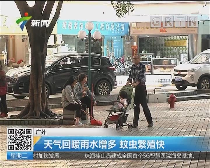 广州:天气回暖雨水增多 蚊虫繁殖快