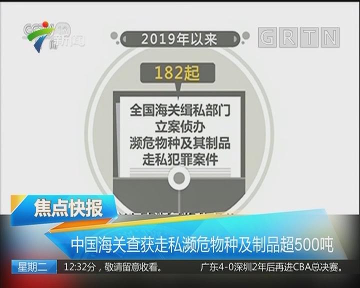 中国海关查获走私濒危物种及制品超500吨