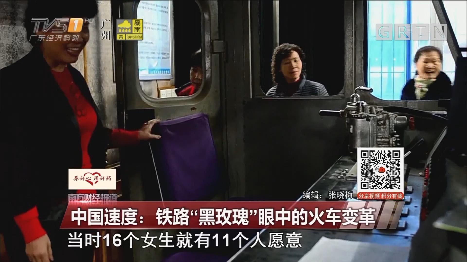 """中国速度:铁路""""黑玫瑰""""眼中的火车变革"""