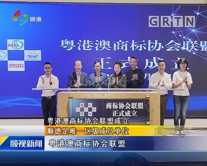 粤港澳商标协会联盟成立:顺德是唯一区级成员单位