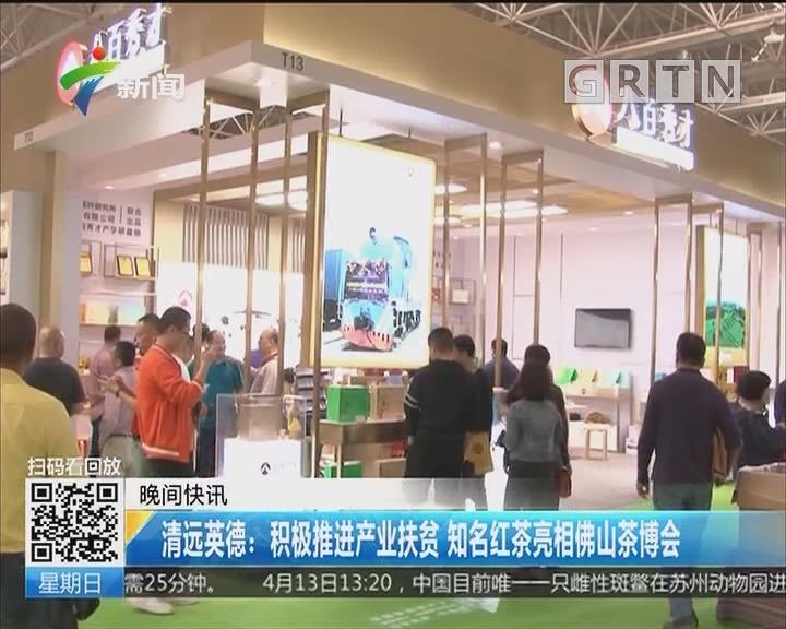 清远英德:积极推进产业扶贫 知名红茶亮相佛山茶博会