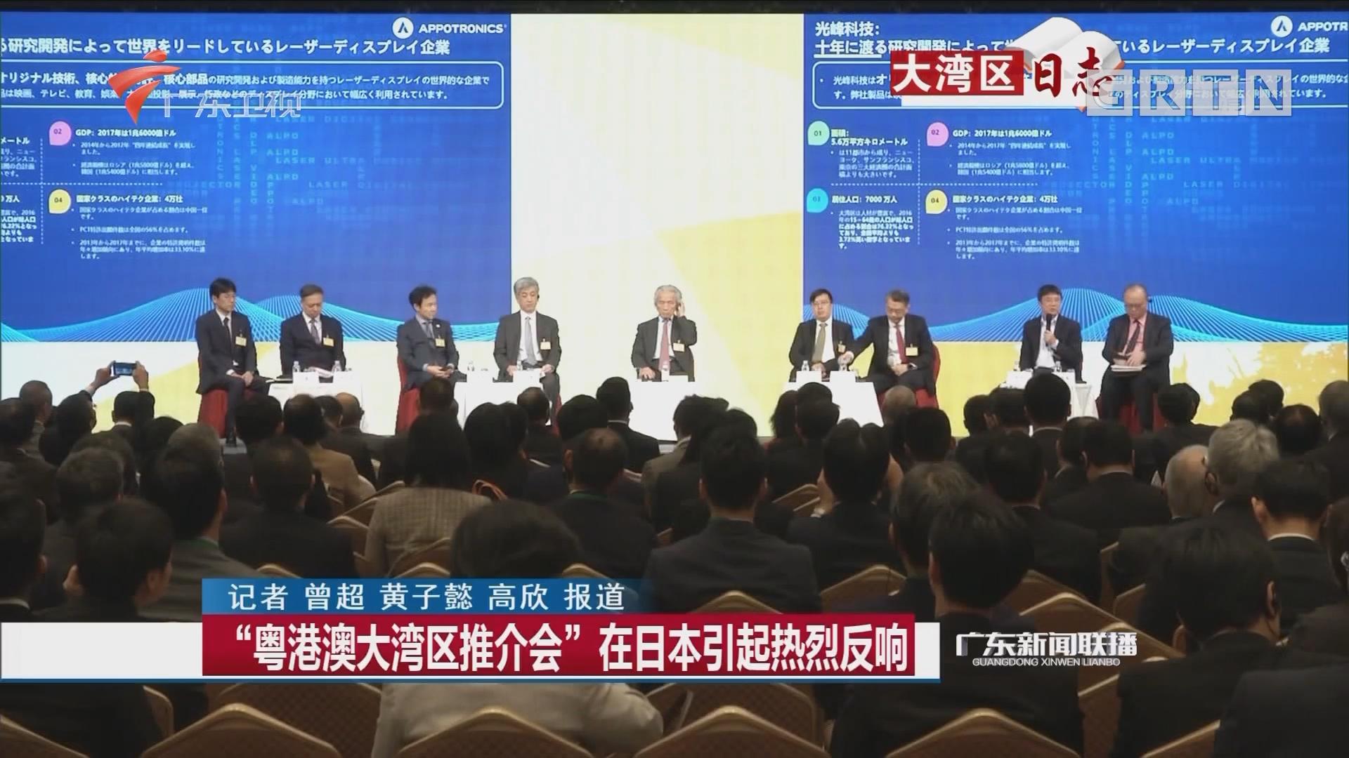 """""""粤港澳大湾区推介会""""在日本引起热烈反响"""