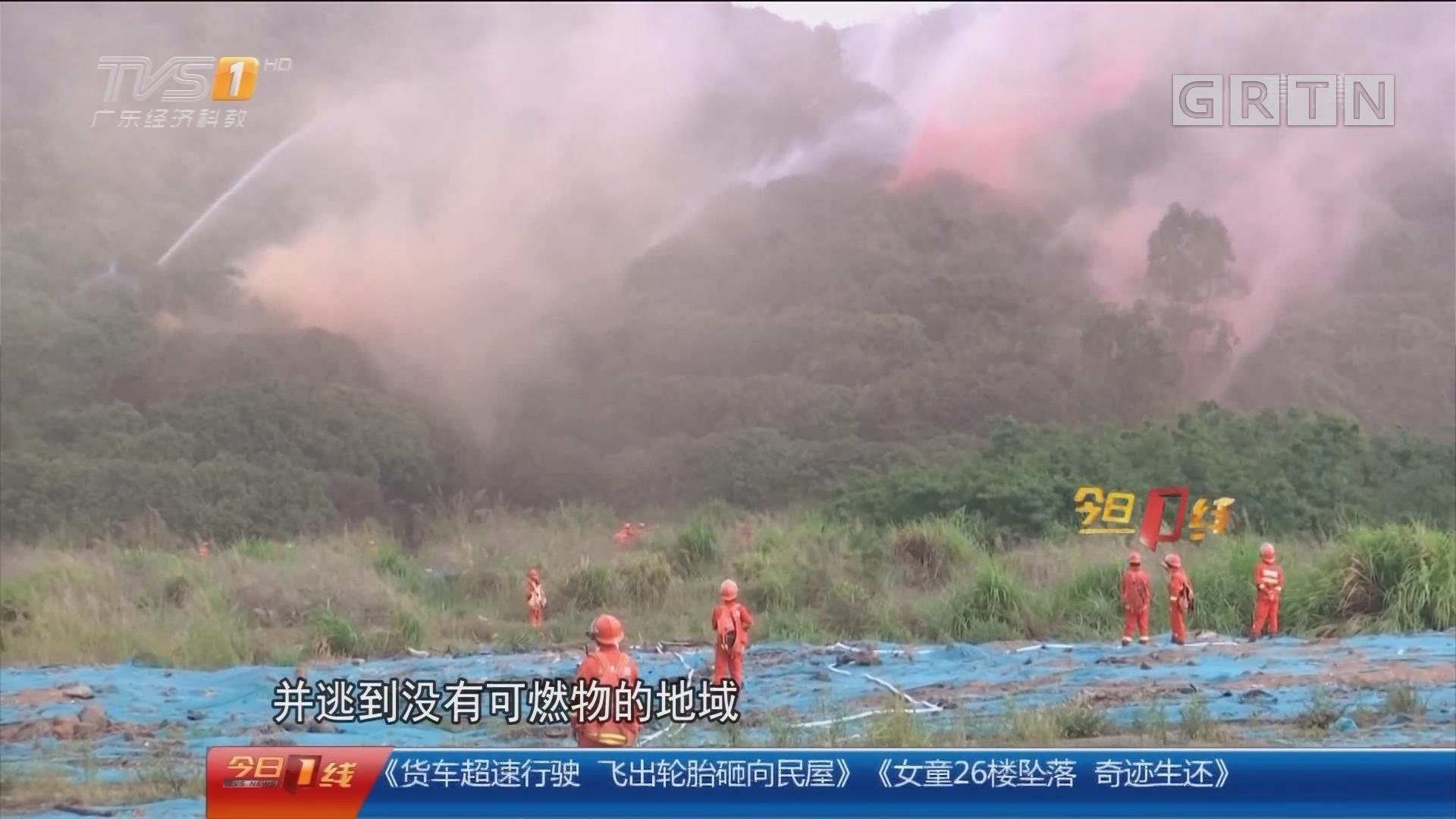 森林防火安全:上山扫墓使用明火 五人被拘留