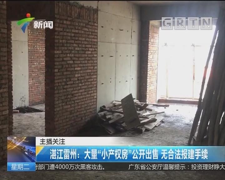 """湛江雷州:大量""""小产权房""""公开出售 无合法报建手续"""