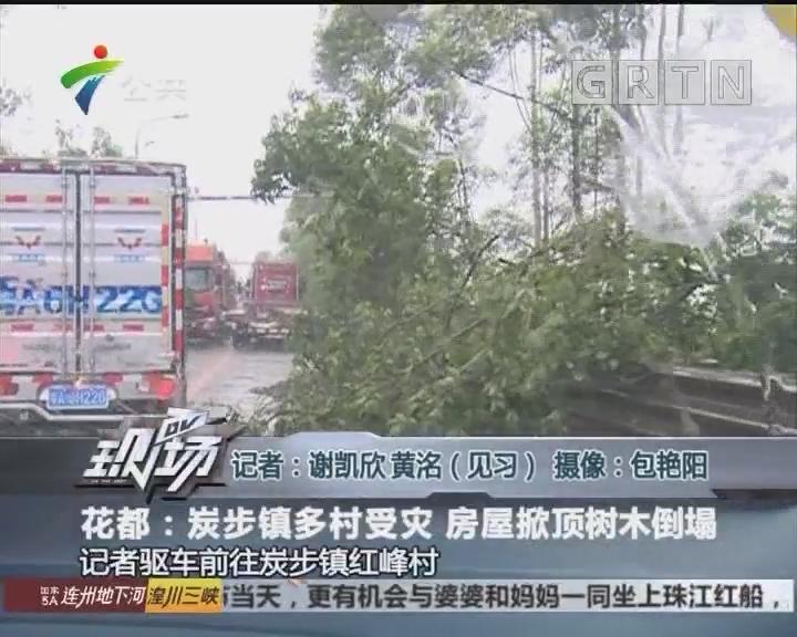 花都:炭步镇多村受灾 房屋掀顶树木倒塌