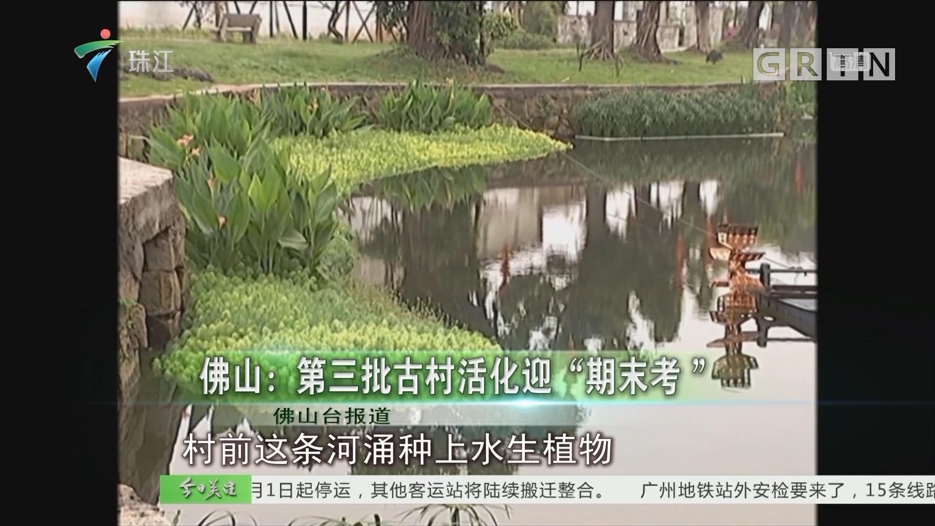 """佛山:第三批古村活化迎""""期末考"""""""
