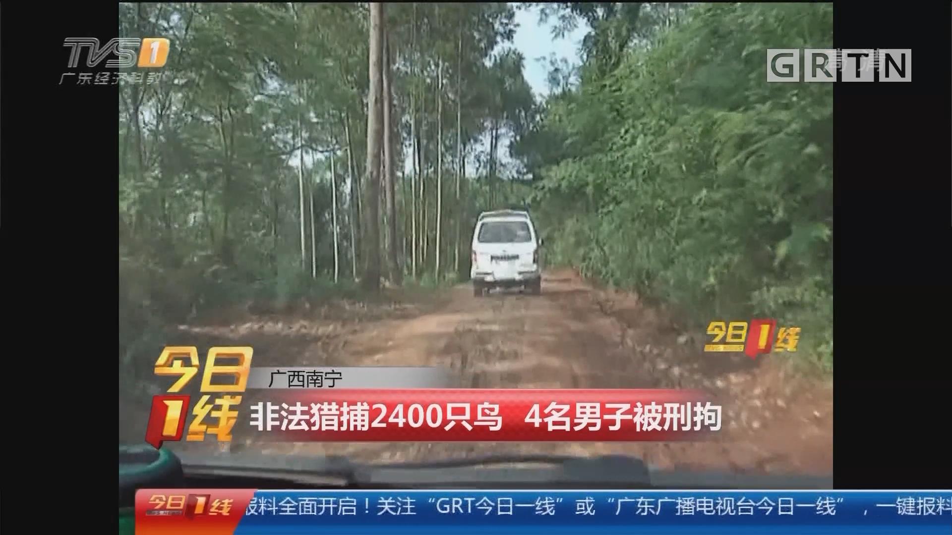 非法猎捕2400只鸟 4名男子被刑拘