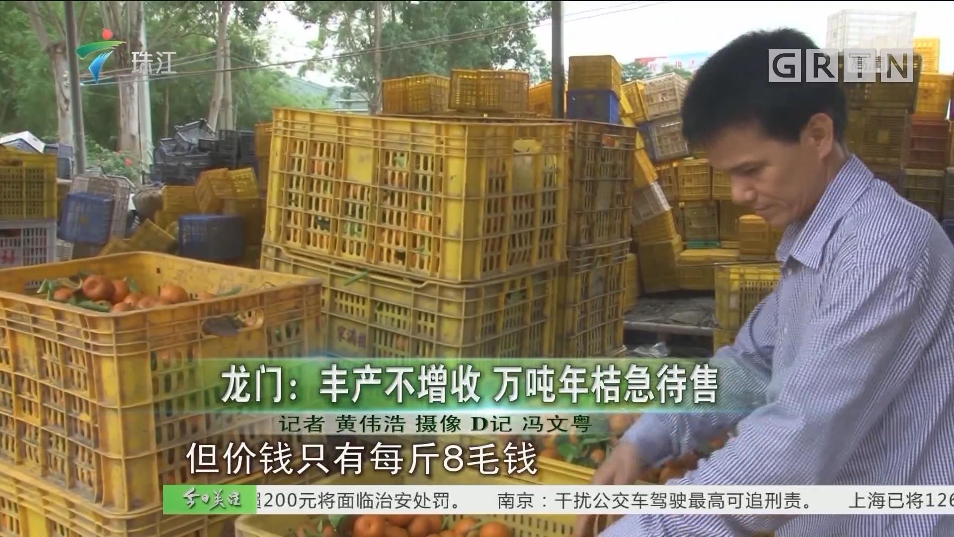 龍門:豐產不增收 萬噸年桔急待售
