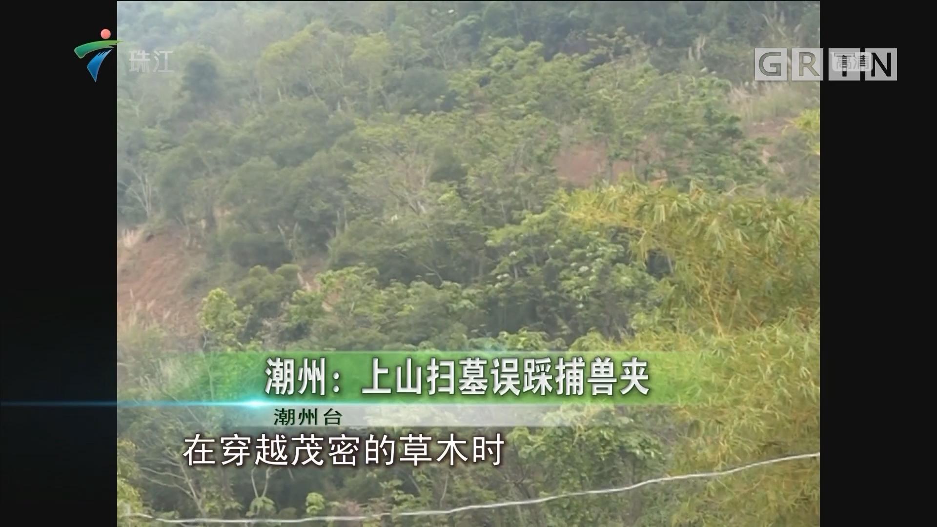 潮州:上山扫墓误踩捕兽夹