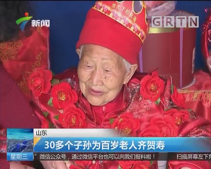 山东:30多个子孙为百岁老人齐贺寿