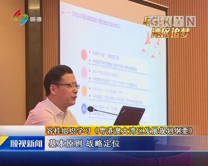 容桂组织学习《粤港澳大湾区发展规划纲要》
