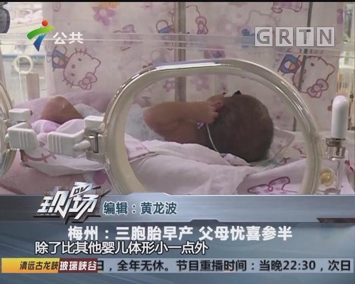 梅州:三胞胎早产 父母忧喜参半
