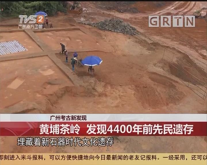 广州考古新发现:黄埔茶岭 发现4400年前先民遗存