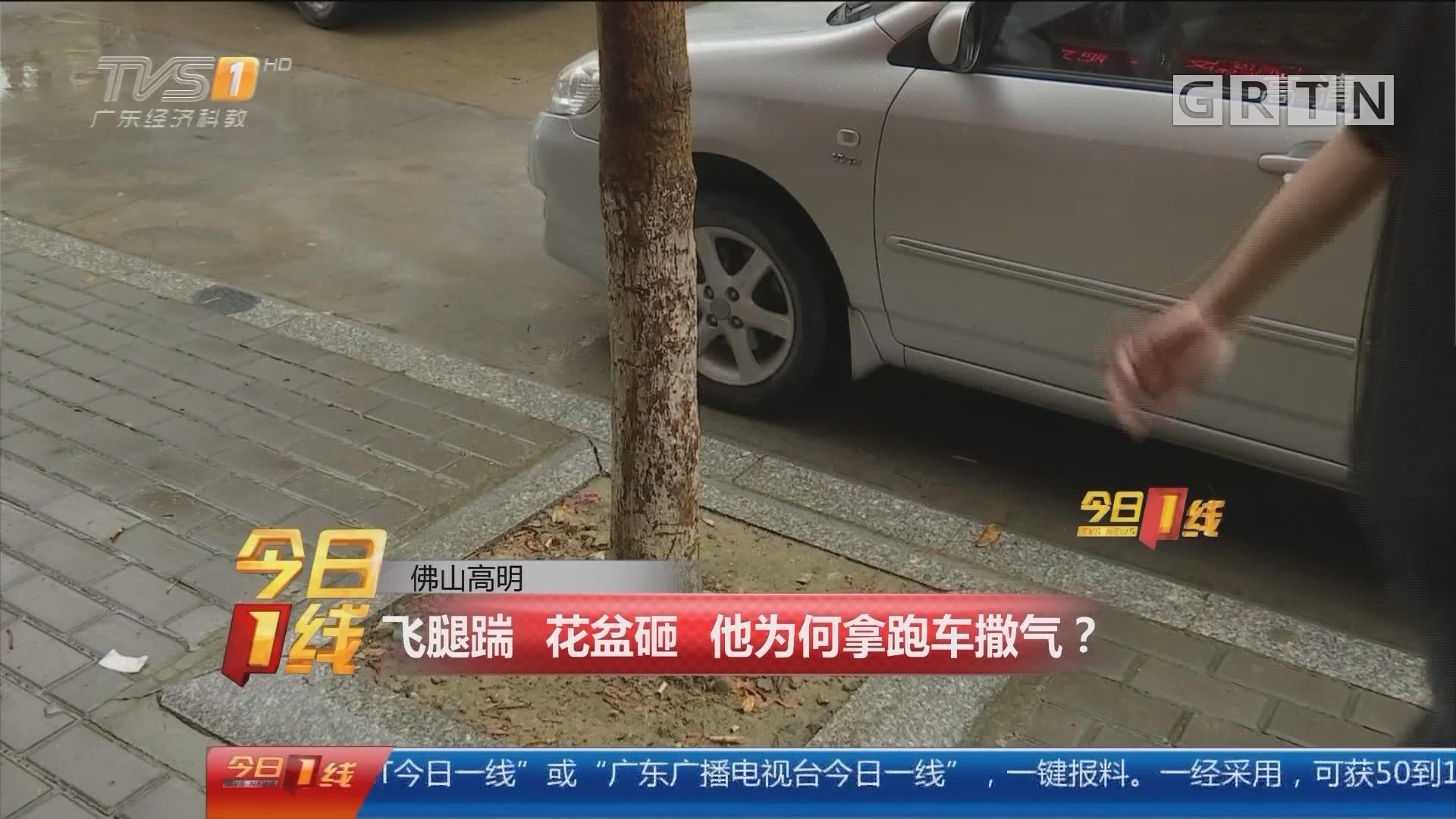 佛山高明:飞腿踹 花盆砸 他为何拿跑车撒气?