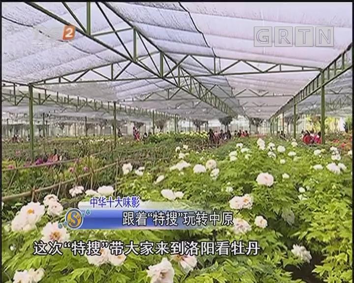 """中华十大味影:跟着""""特搜""""玩转中原"""