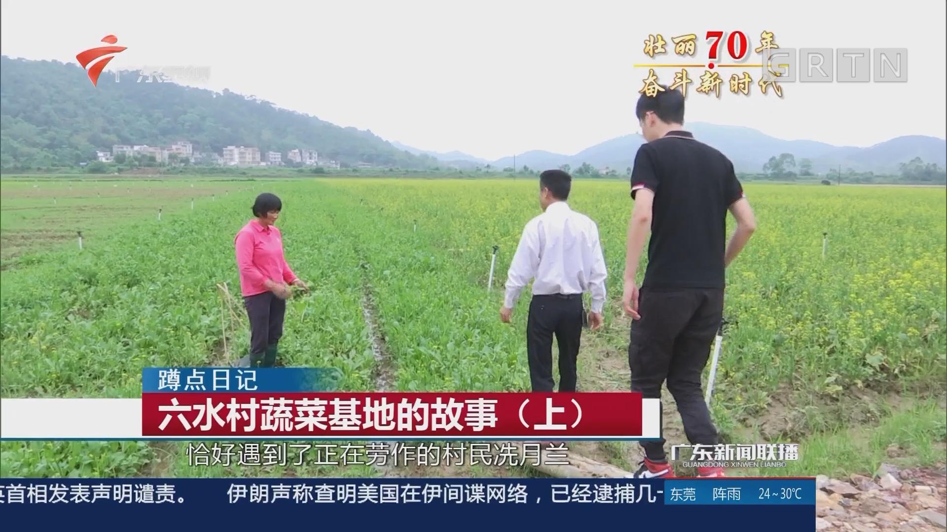六水村蔬菜基地的故事(上)