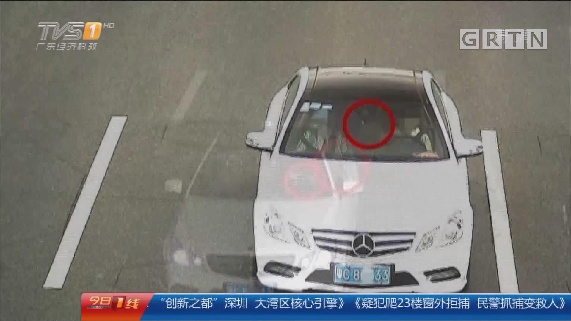 珠海:抱狗开车荒唐 女司机被拦停处罚