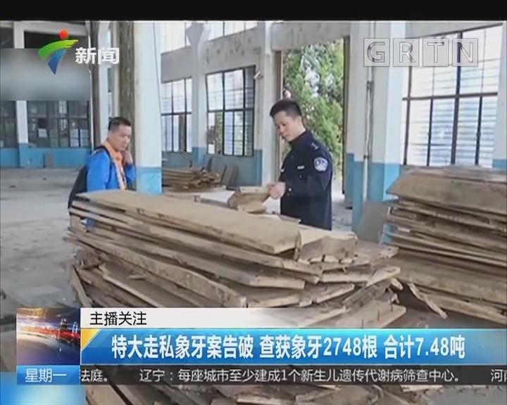 特大走私象牙案告破 查获象牙2748根 合计7.48吨