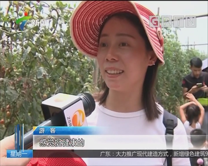 清明假期广东接待游客近1800万人次