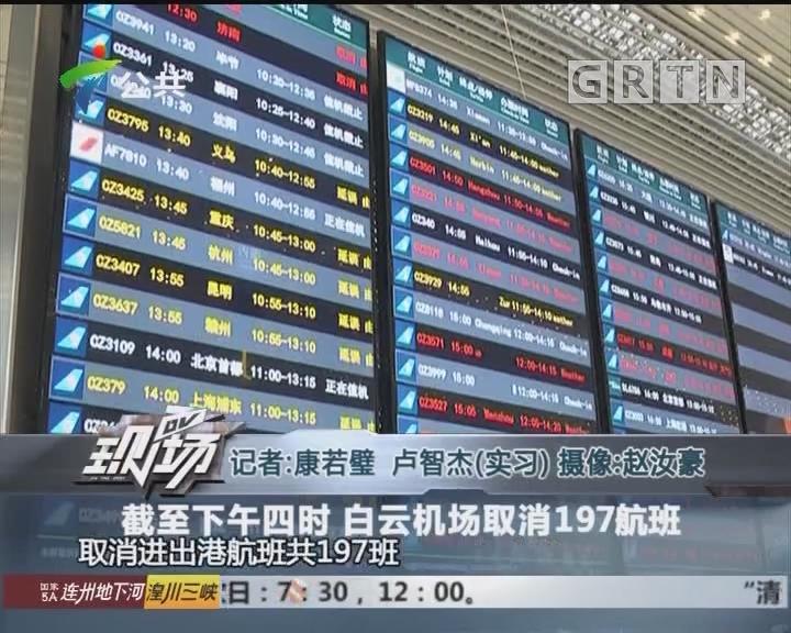 截止下午四时 白云机场取消197航班
