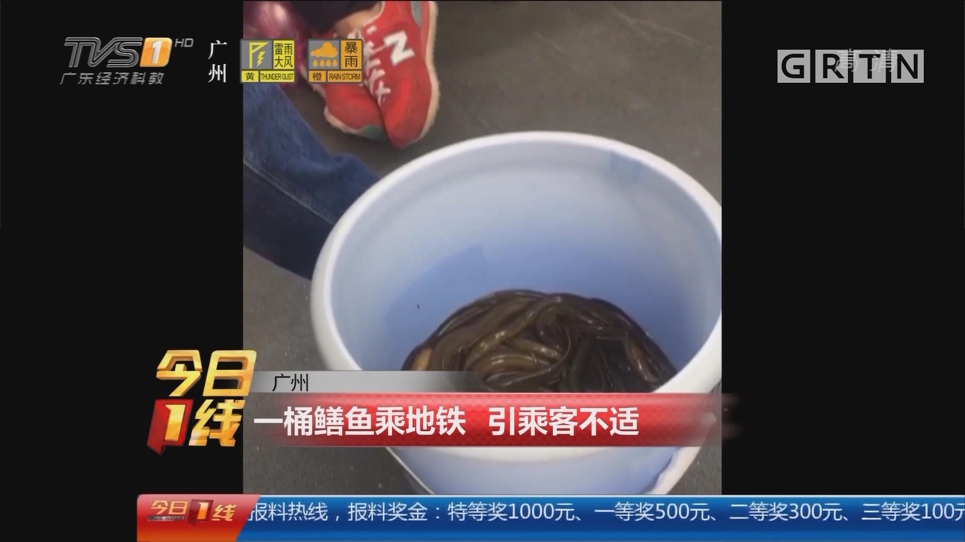 广州:一桶鳝鱼乘地铁 引乘客不适