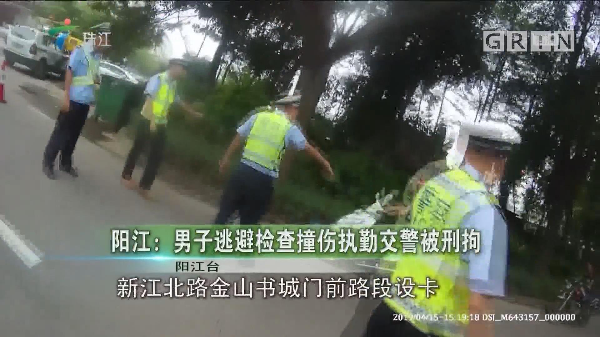 阳江:男子逃避检查撞伤执勤交警被刑拘