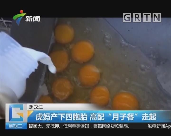 """黑龙江:虎妈产下四胞胎 高配""""月子餐""""走起"""