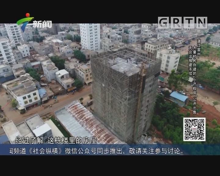 """[2019-04-16]社会纵横:湛江雷州:大量村民自建的""""小产权房""""公开出售 无合法报建手续"""