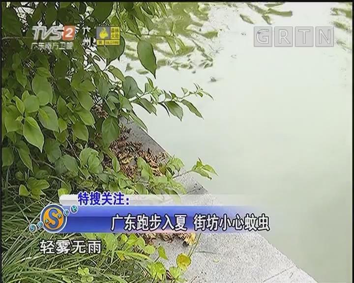 广东跑步入夏 街坊小心蚊虫