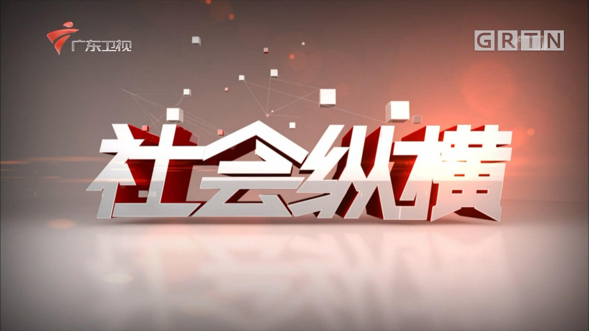 [HD][2019-04-03]社会纵横:追梦粤港澳大湾区