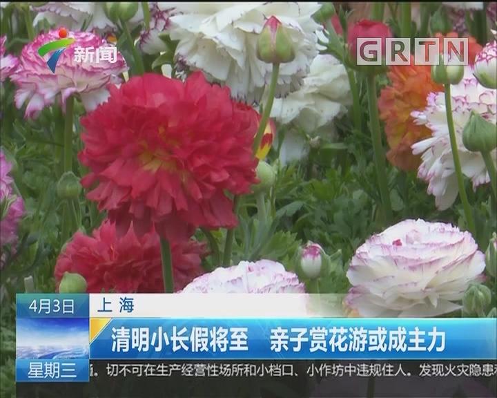 上海:清明小长假将至 亲子赏花游或成主力
