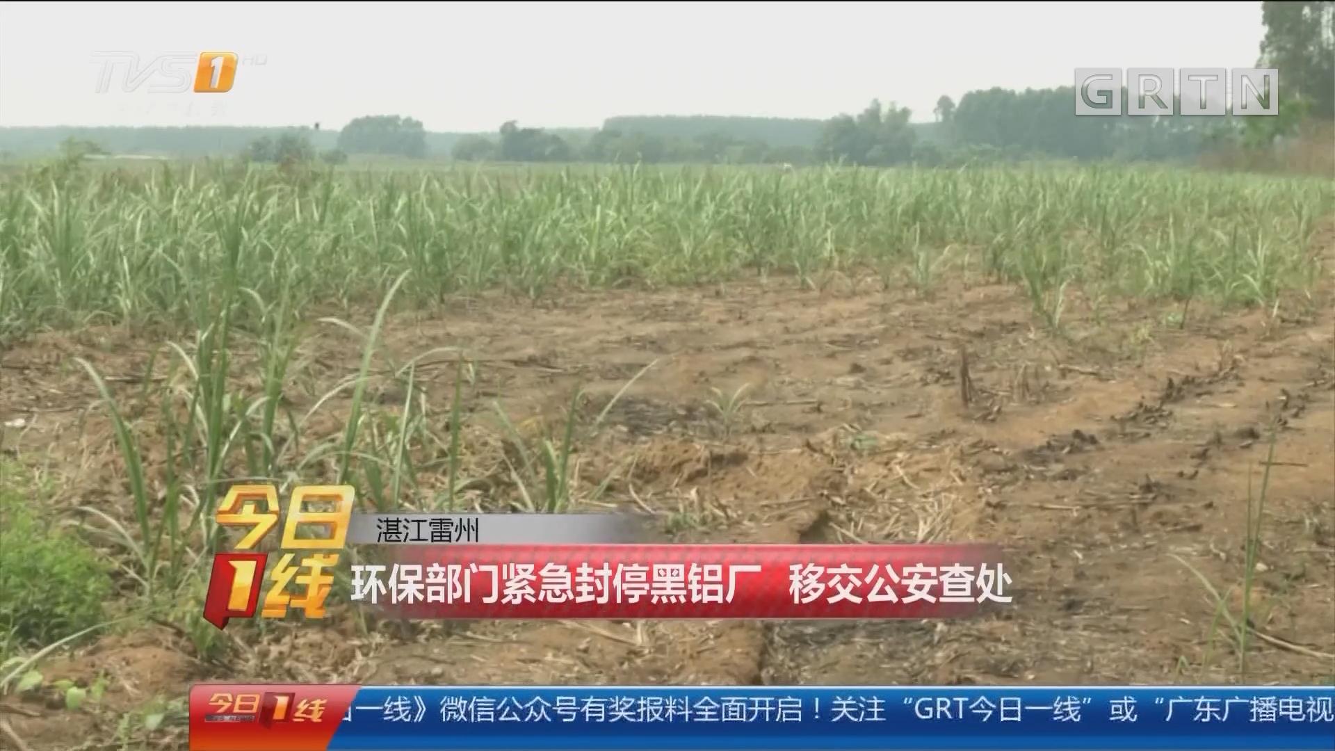 湛江雷州:环保部门紧急封停黑铝厂 移交公安查处