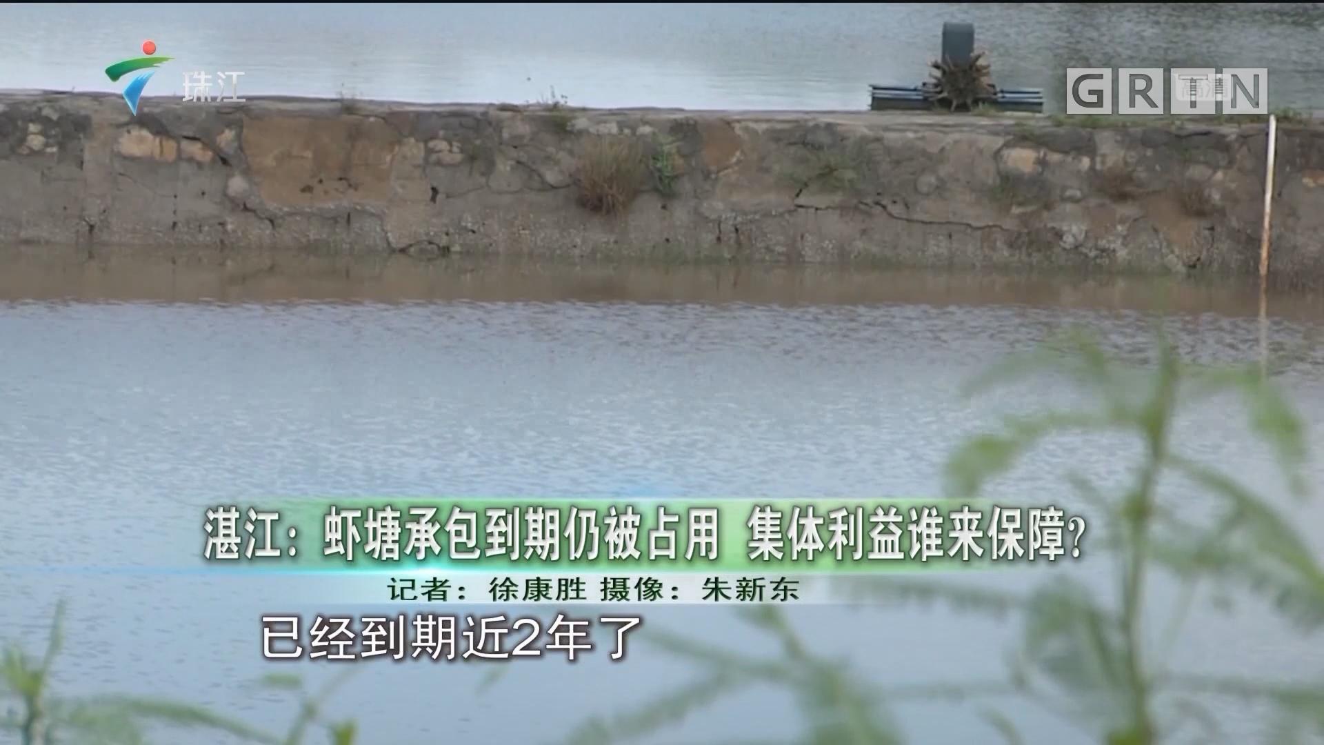 湛江:虾塘承包到期仍被占用 集体利益谁来保障?