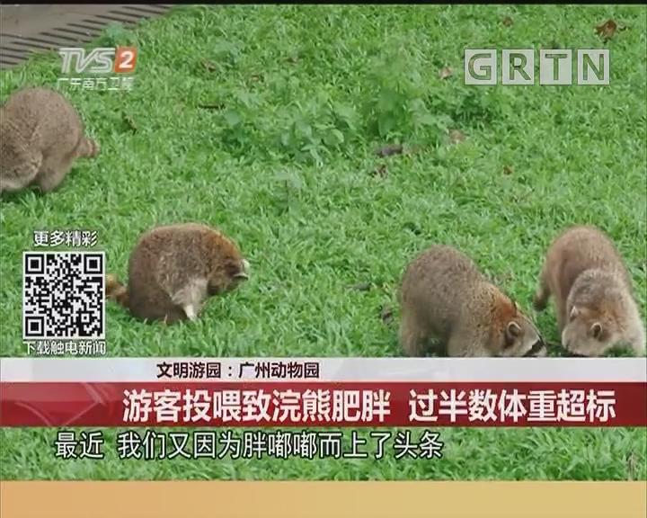 文明游园:广州动物园 游客投喂致浣熊肥胖 过半数体重超标