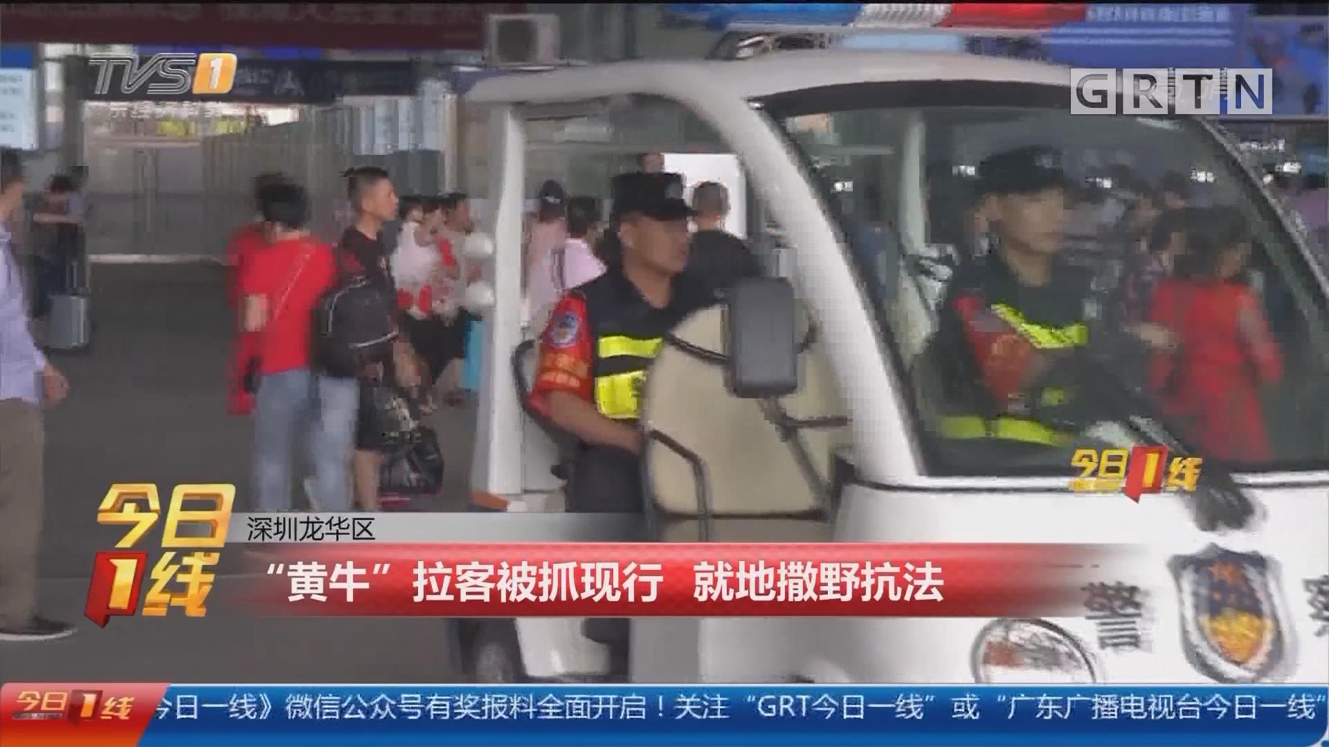 """深圳龙华区:""""黄牛""""拉客被抓现行 就地撒野抗法"""