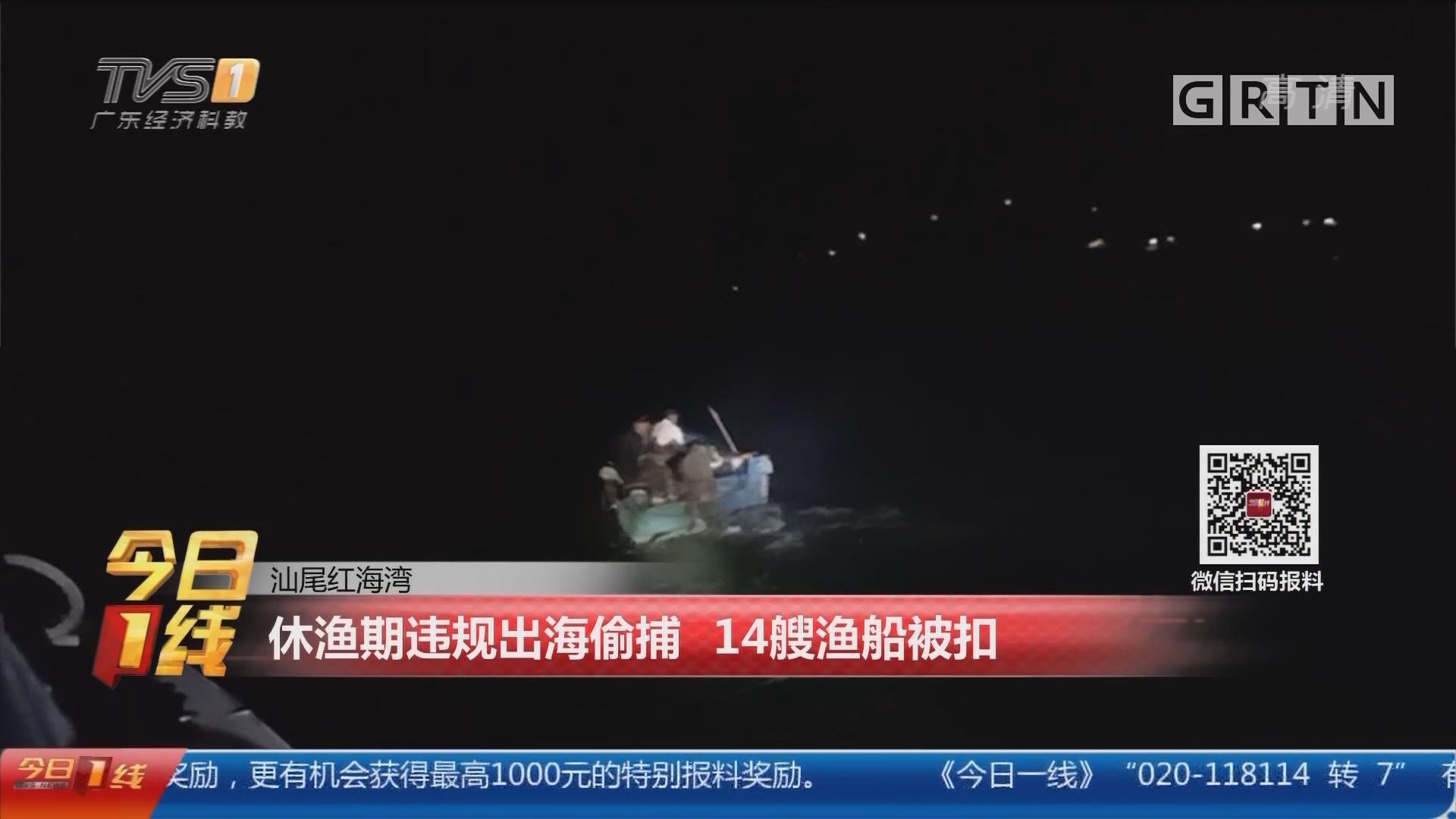 汕尾红海湾:休渔期违规出海偷捕 14艘渔船被扣