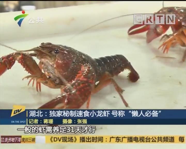"""湖北:独家秘制速食小龙虾 号称""""懒人必备"""""""