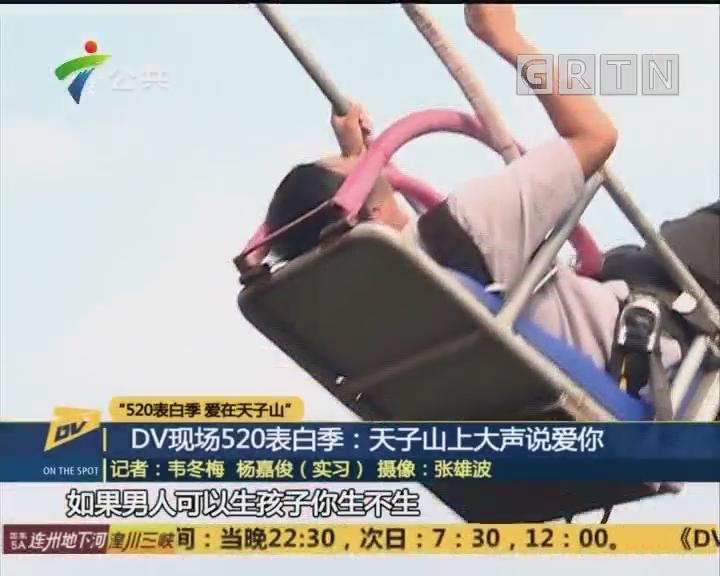 DV现场520表白季:天子山上大声说爱你