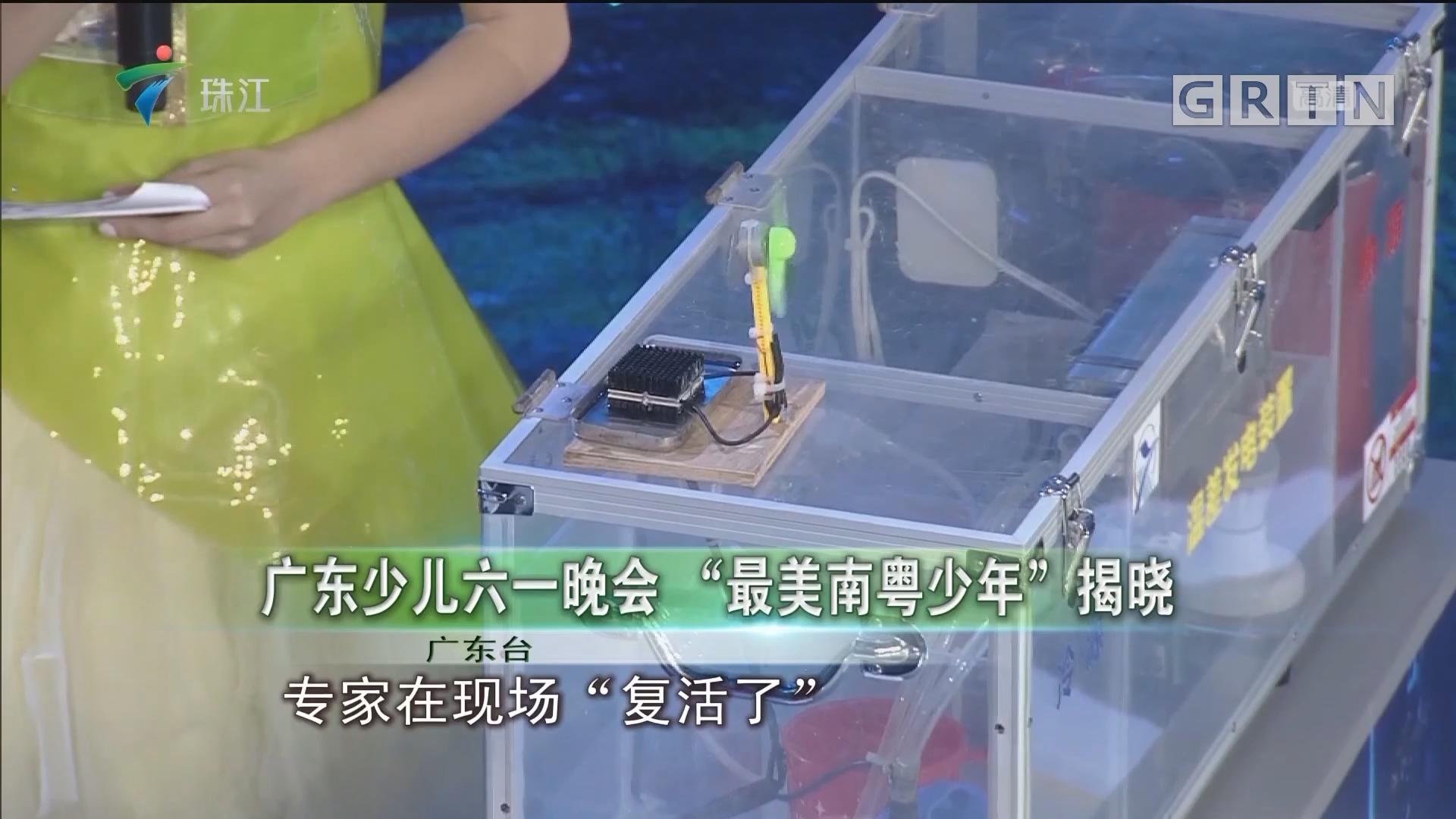 """广东少儿六一晚会 """"最美南粤少年""""揭晓"""