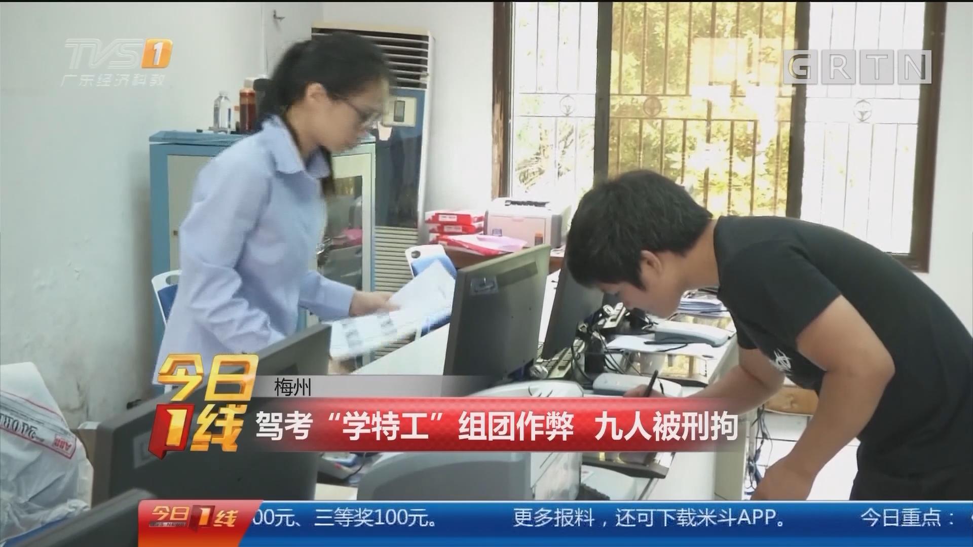 """梅州:驾考""""学特工""""组团作弊 九人被刑拘"""