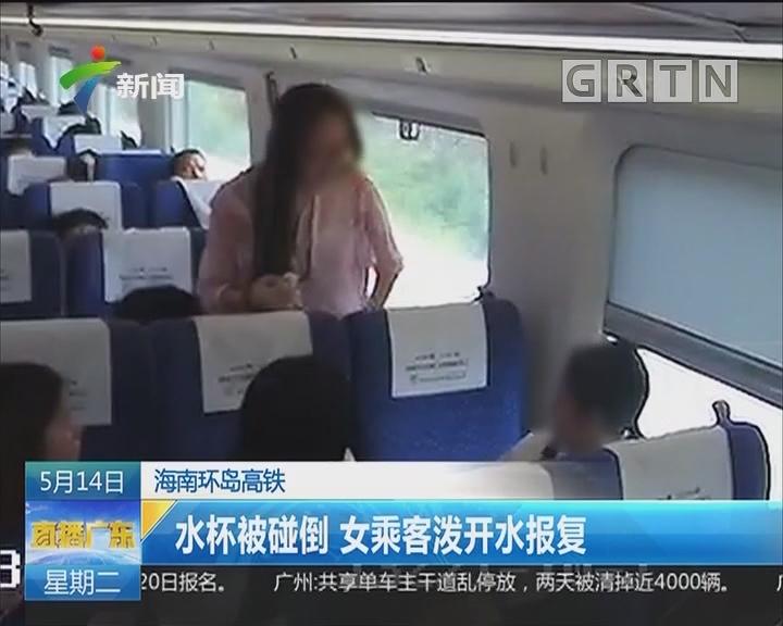 海南环岛高铁:水杯被碰倒 女乘客泼开水报复