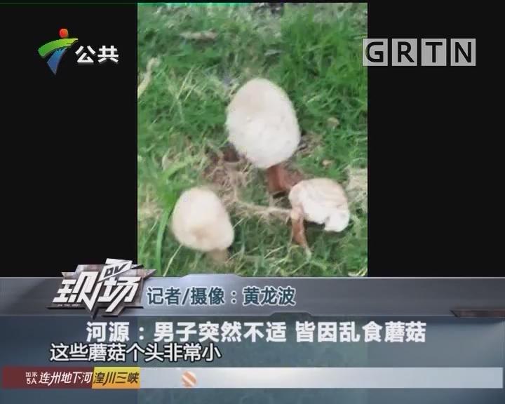 河源:男子突然不适 皆因乱食蘑菇